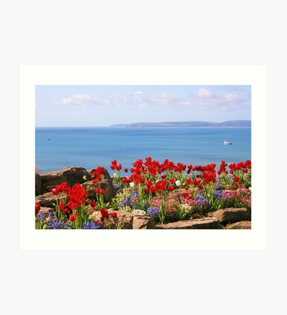 Tulips on the East Cliff, Bournemouth Art Print