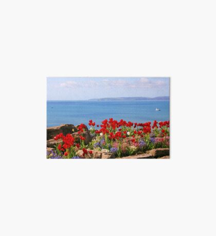 Tulips on the East Cliff, Bournemouth Art Board