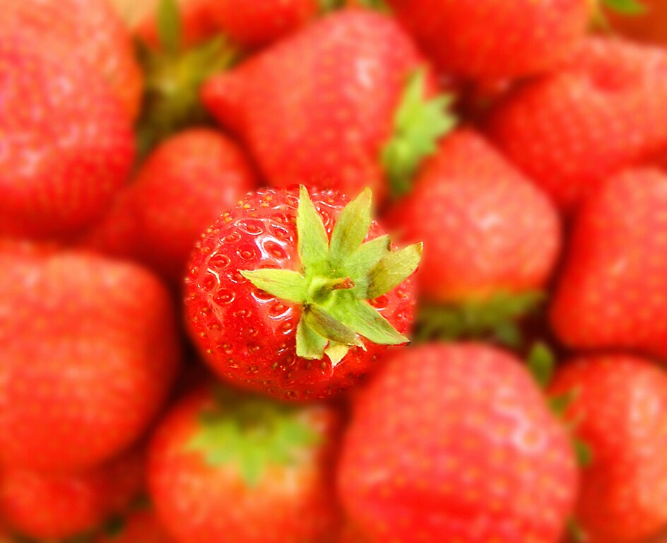 Luscious strawberry by jay12