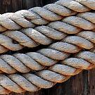 Rope by Henrik Lehnerer