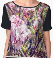 Counting Cheerful Cherry Blossoms Chiffon Top