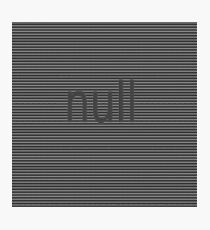 null Photographic Print