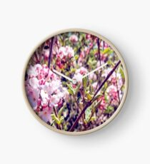Counting Cheerful Cherry Blossoms Clock