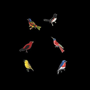 Colorful Birds on Black by Greenbaby