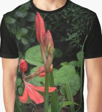 Red Scarborough Lily Flower Leith Park Victoria 20170412 1634  Graphic T-Shirt