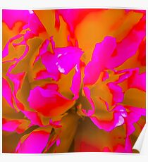 Peony Flower with a Twist Poster