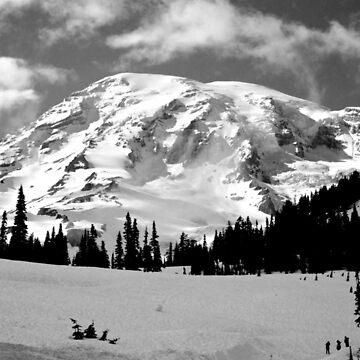 Mount Rainier National Park by chaneyforkriver