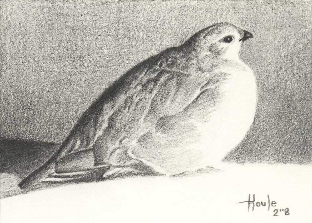 Peace and Tranquility - Ptarmigan by John Houle
