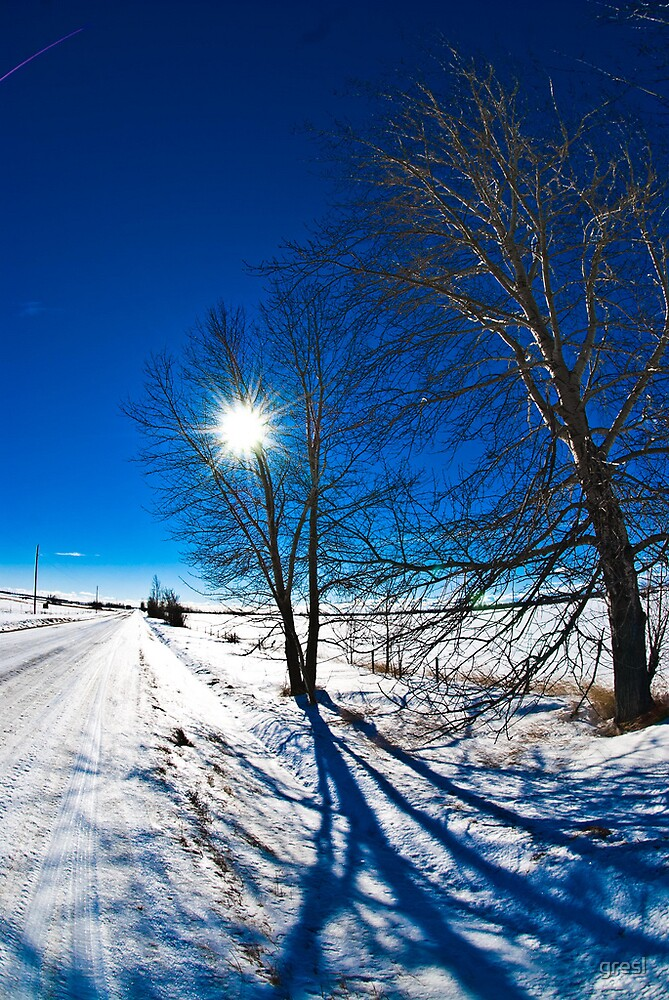 Brilliant blue sky Alberta Prairie. by gresl