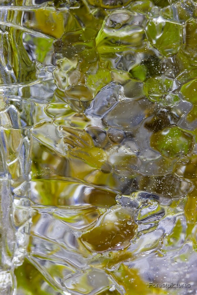 Yellow ice mosaic by Forestpictures