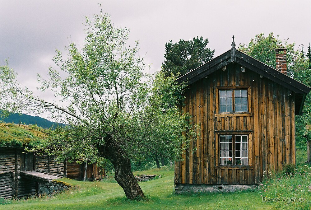 Old house in Telemark, Norway by Bente Agerup