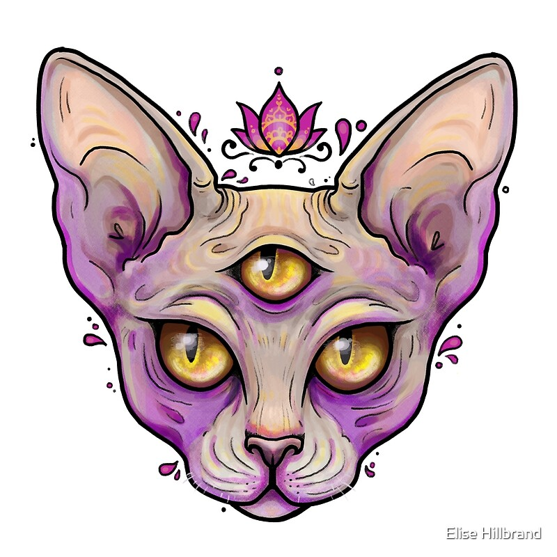 Eyed Hairless Cat Drawing