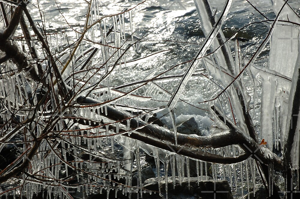 Casey's ice lll by christiane