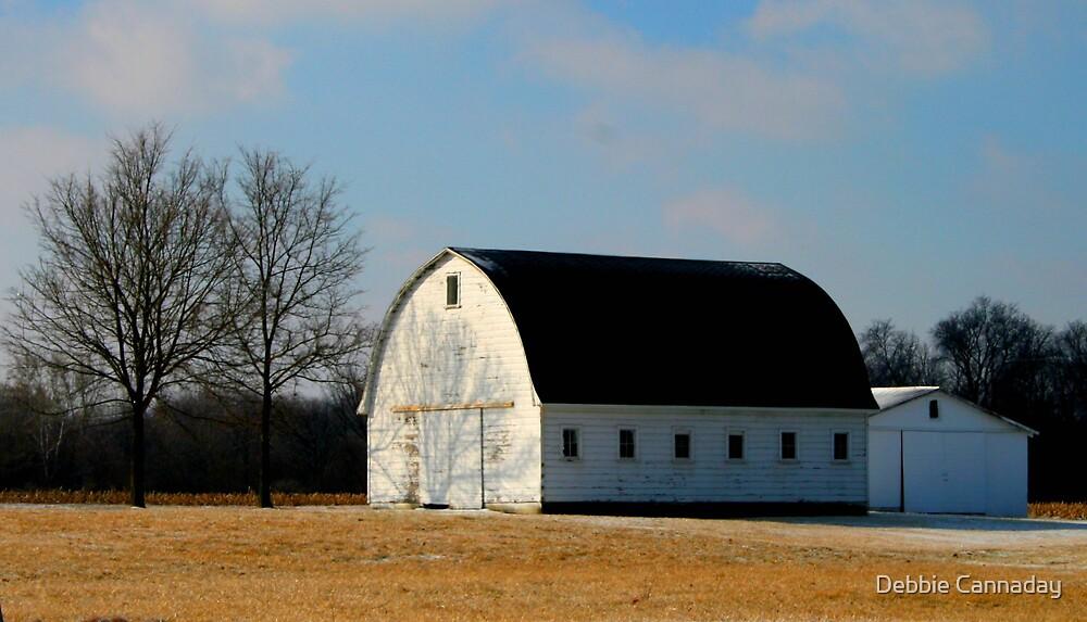 Old Barn by Debbie Cannaday