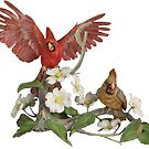 Male and Female Northern Cardnials and dogwood by Walter Colvin