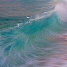 Shorebreak by Barbara  Brown