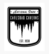 Carlsbad Caverns National Park Badge Design Photographic Print
