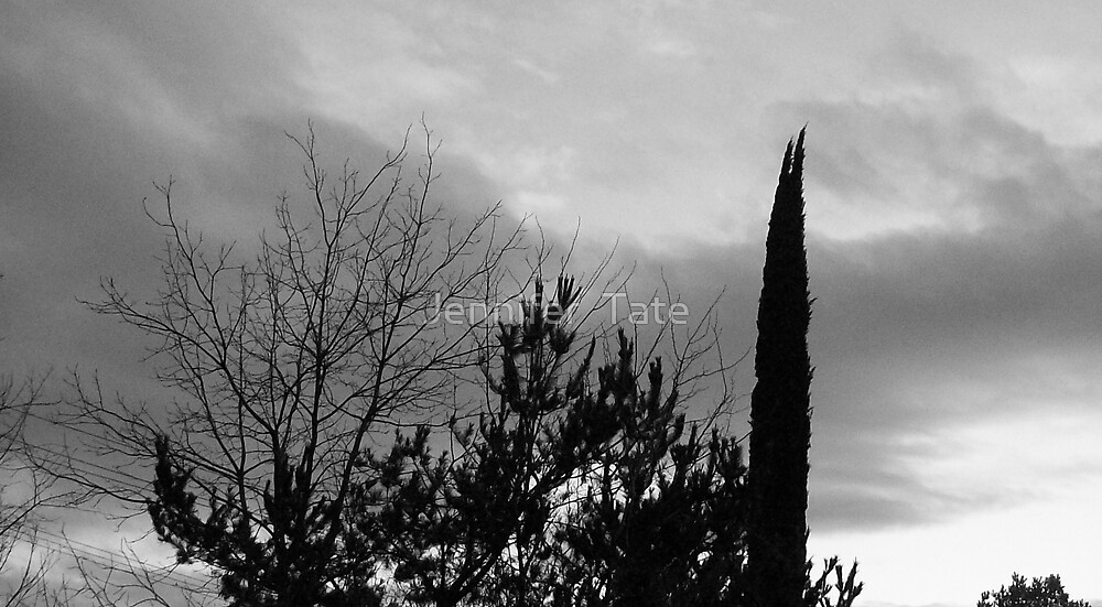 Storm 2 by Jennifer  Tate