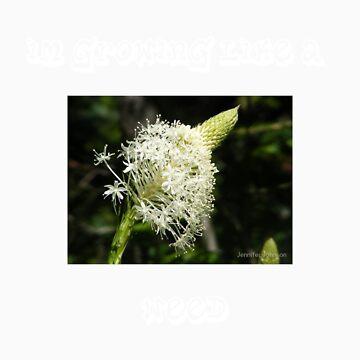 WEEDS by sierrajeni