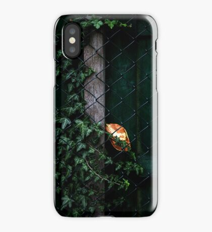 Autumn Messenger iPhone Case/Skin