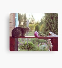 Cat and peonies Canvas Print