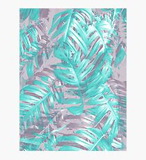 Teal and Silver foliage Photographic Print