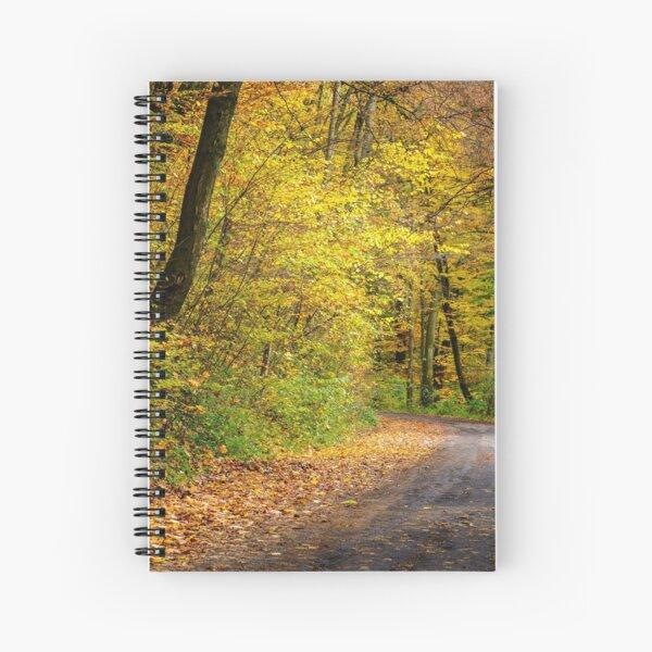 forest path in orange foliage Spiral Notebook