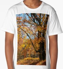 autumn forest in foliage Long T-Shirt