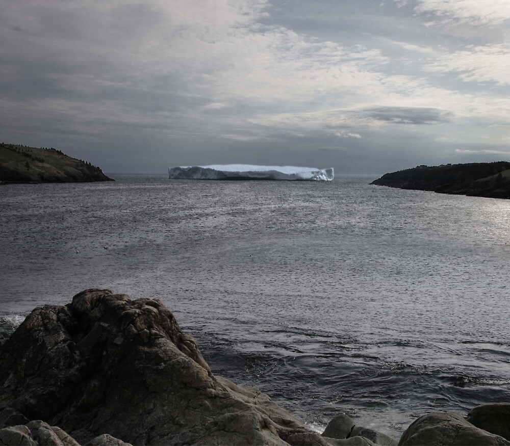 Iceberg in the cove by ElYono