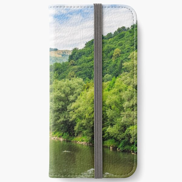 River among the forest in picturesque Carpathian mountains in summer iPhone Wallet