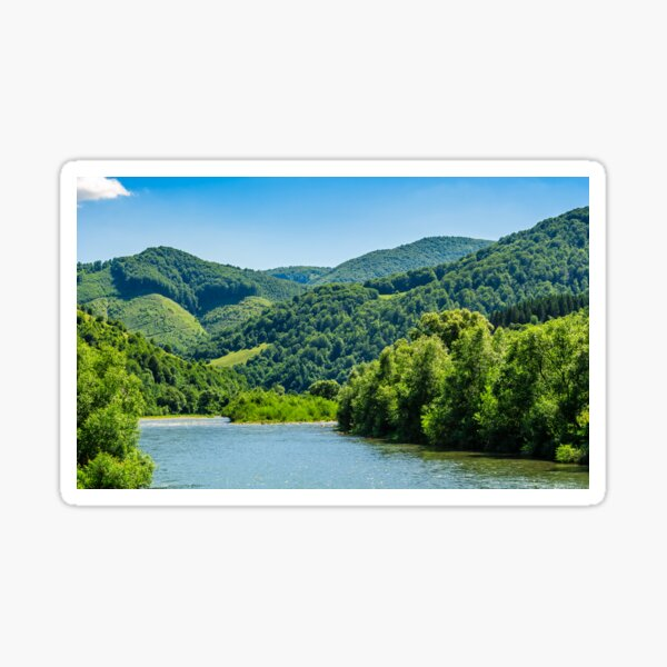 River among the forest in picturesque Carpathian mountains in summer Sticker
