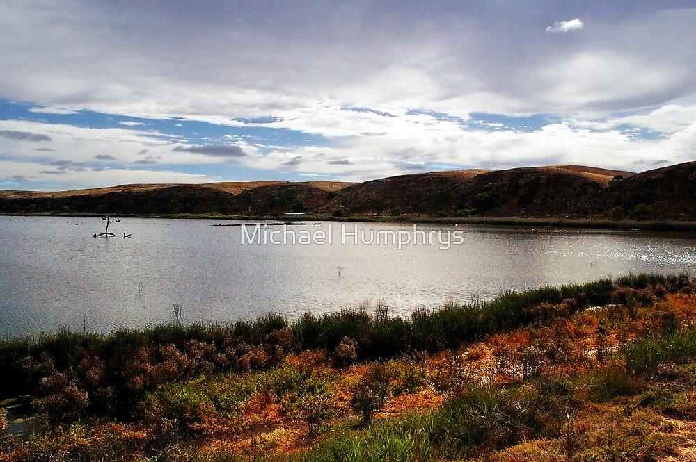 Paiwalla Wetlands, South Australia by Michael Humphrys