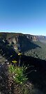 Pulpit Rock in the Lord's Blue Mountains by STEPHEN GEORGIOU PHOTOGRAPHY