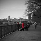 brooklyn heights promenade by paolo amiotti