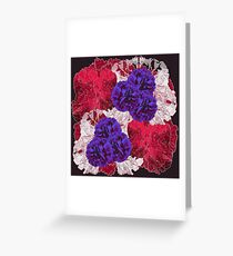 OUTLINED FLOWERS Greeting Card