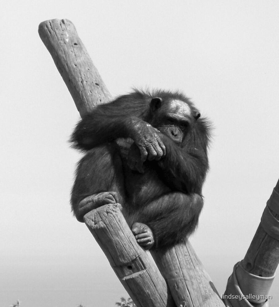 Hangin' Around by lindseysalleyman