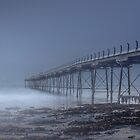 Moody Blue by RichardSayer
