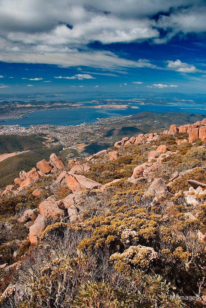 Mt. Wellington Tasmania by MiImages