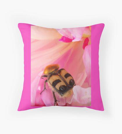 Bee Beetle Throw Pillow