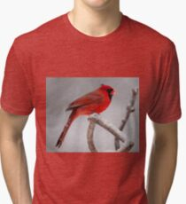 Cardinal in the snow Tri-blend T-Shirt