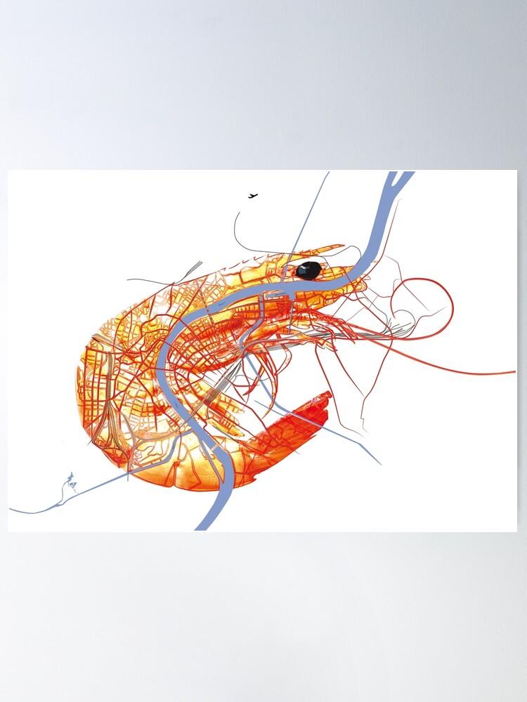 Alternative Ansicht von Basel Citymap Artwork   SHRIMP Poster