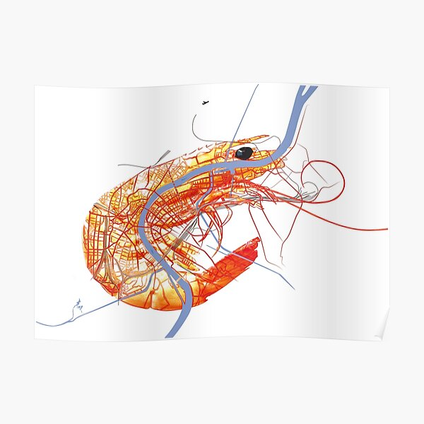 Basel Citymap Artwork | SHRIMP Poster
