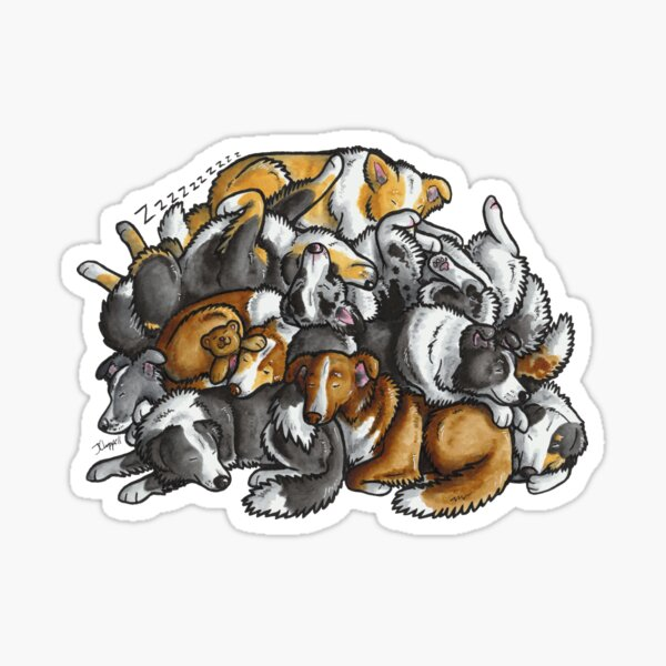 Sleeping pile of Border Collie dogs Sticker