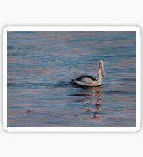 Pelican Sunrise Sticker