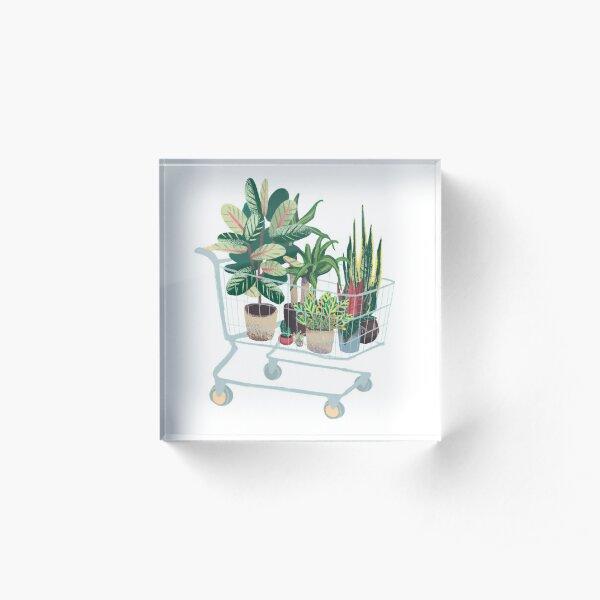 Plant friends Acrylic Block