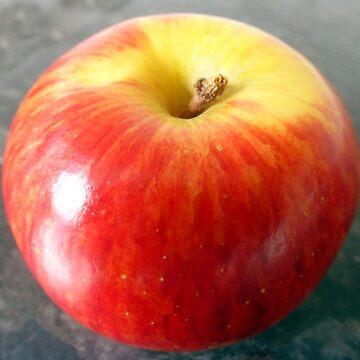 Apple Picking Time by trish725