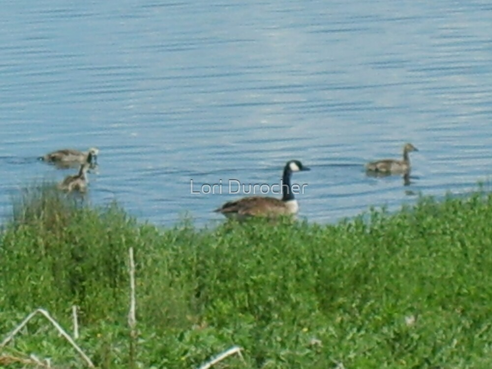 Momma Geese by Lori Durocher