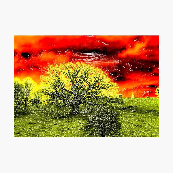 Marmalade sky Photographic Print