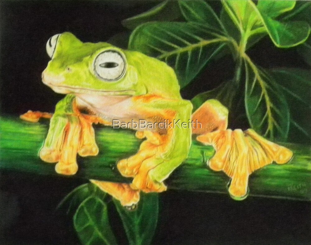 Musky Flying Frog by BarbBarcikKeith