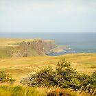 Lealt - Sound of Raasay - Isle of Skye by Yannik Hay